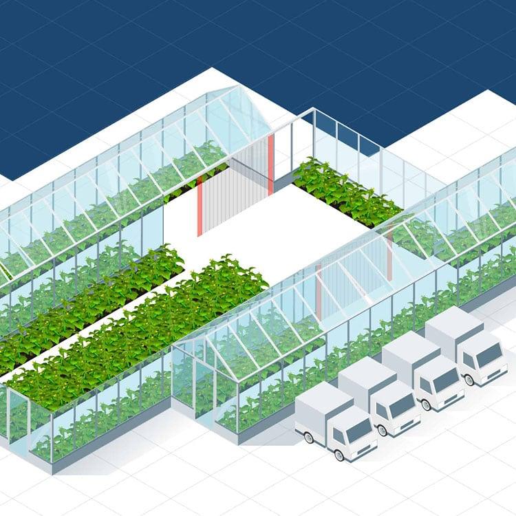Illustration Gewächshausanbau und Gartenbau EFD